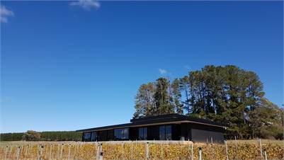 Orange NSW Five Acres, New house, Pinot and Chardonnay Vineyard