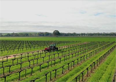 Premium Barossa Valley Lifestyle Opportunity